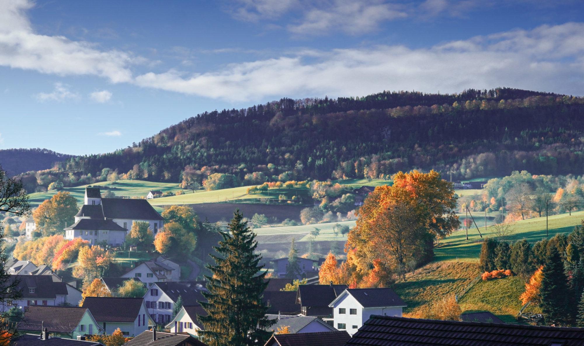 Verein Pro Burg
